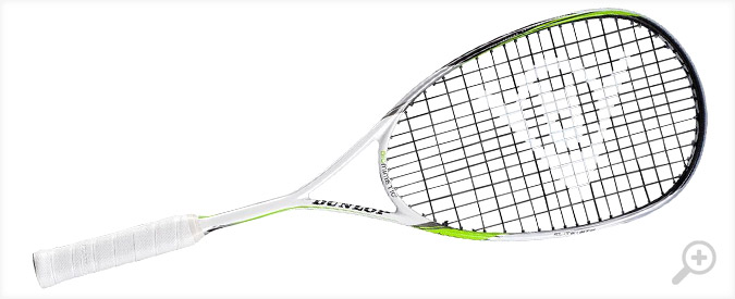 Dunlop Biomimetic Elite GTS