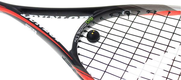 Dunlop Biomimetic Pro GTS 140